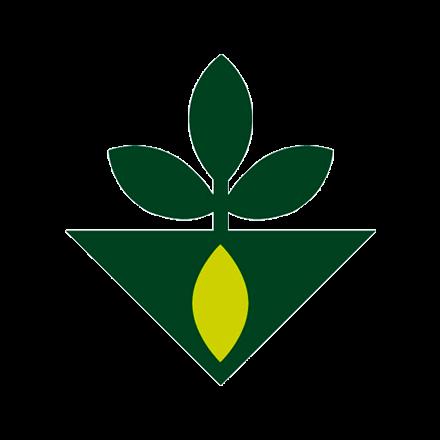 זרעים גדרה